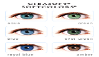CibaSoft SoftColors contacts
